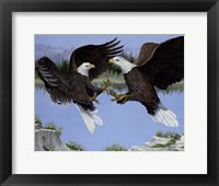 Framed War Eagles