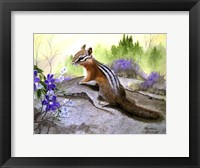 Framed Chipmonk