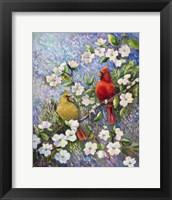 Framed Cardinal Impressions