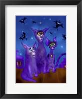 Framed Night Cats 3