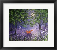 Framed Midnight In The Bluebell Wood