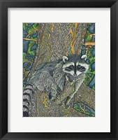 Framed Bandit