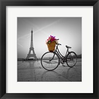 Framed Bike in Paris