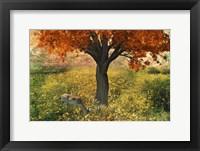 Framed Nature Color