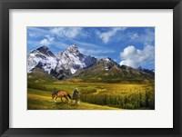 Framed Wild Nature