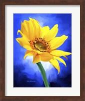 Framed Sun Flower