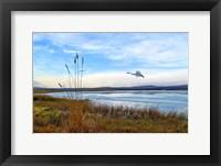 Framed Wild Nature 2