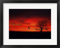 Framed Lone Tree And A Bird