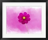 Framed Pink Flower