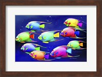 Framed Colorful Fishes 2