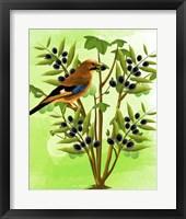 Framed Bird on Plant