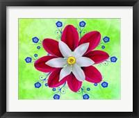 Framed Floral Design P