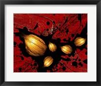 Framed Seeds