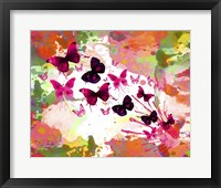 Framed Butterflies 2