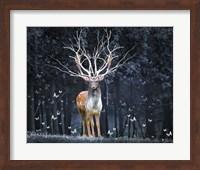 Framed Magical Deer