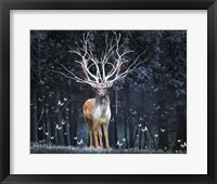 Framed Magical Deer