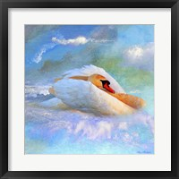 Framed Beautiful Swan 2A