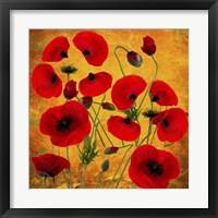 Framed Poppy Flowers 2