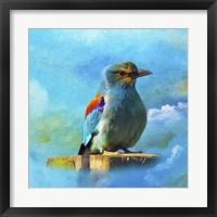 Framed Blue Bird 2A