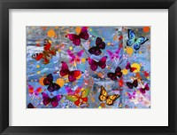 Framed Butterflies Season