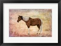 Framed Horse Image