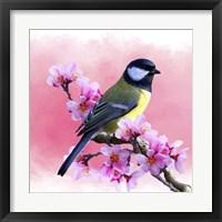 Framed Spring Bird 3A