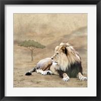Framed King 1A