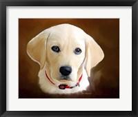 Framed Dog 1A