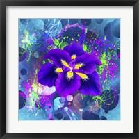 Framed Flower Design 4AX