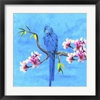 Framed Spring Bird And Flower