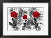 Framed Red Roses