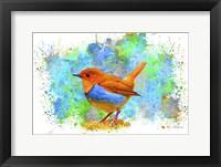 Framed Bird Collection 4