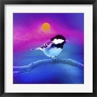 Framed Bird Collection 8