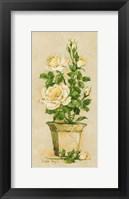 Framed Shades of Rose II