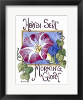 Framed Heaven Sent Mornning Glory-Seed Packet