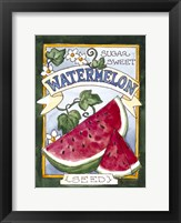 Framed Large Watermelon-Seed Packet