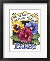 Framed Old Fashioned Pansy-Seed Packet