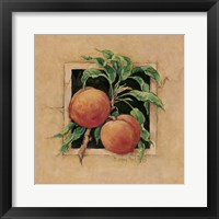 Framed Peach Square