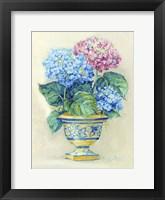 Framed Hydranga Blooms II