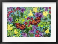 Framed Rainbows & Butterflies