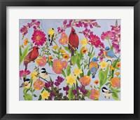 Framed Songbird Collection