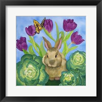 Framed Bunny with Cabbage
