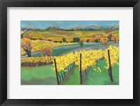 Framed Autumn Vineyard