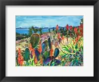 Framed Santa Barbara Grace