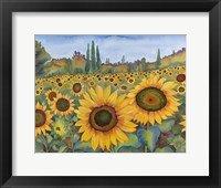 Framed Sunflower Fields