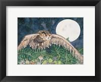 Framed Eagle Owl