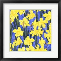 Framed Fertile Rising - Daffodils
