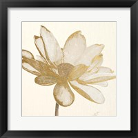 Framed Vintage Lotus Cream I