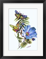 Framed Butterfly on Blue Poppy