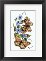Framed Butterfly on Blue